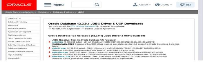 Oracle Database Web Api